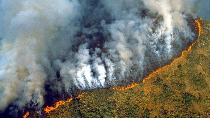 Amazon, the 'lungs of the planet', is on fire – here are 5 things you need  to know