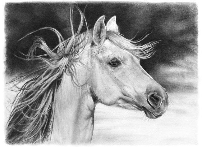 Por Amor al Arte: Dibujos Impresionantes hechos con lapiz .