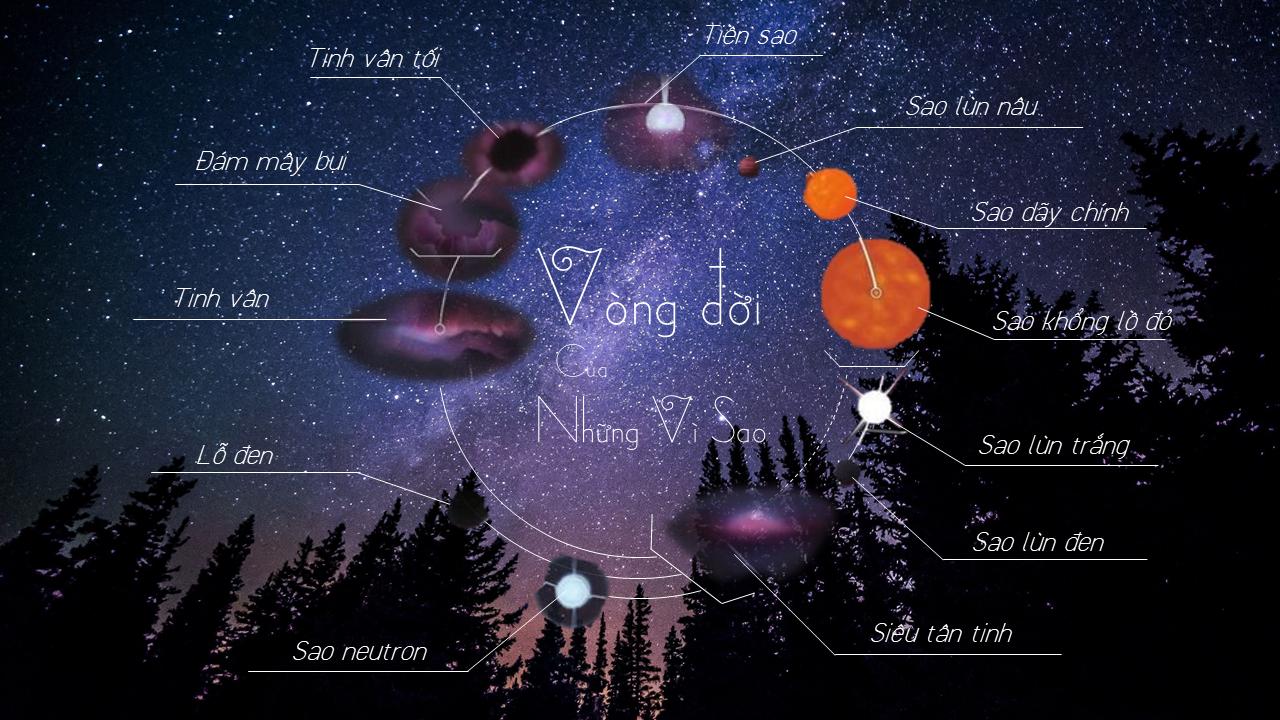 Vòng tiến hóa sao, stellar evollution
