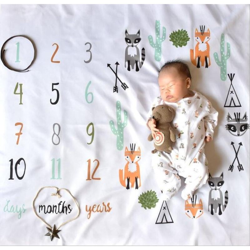 Baby's Journey Photo Blankets