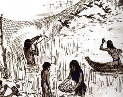 Miwok Indians Food California Indians