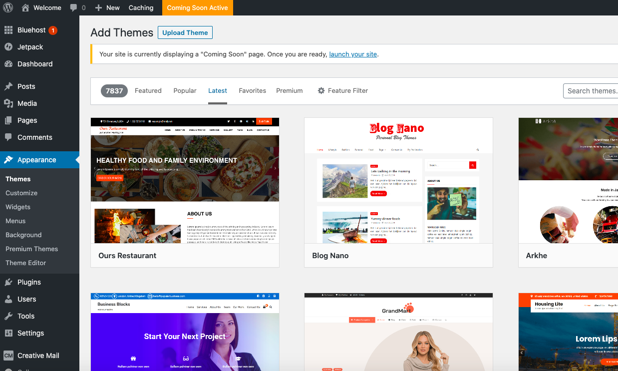 WordPress theme library screen
