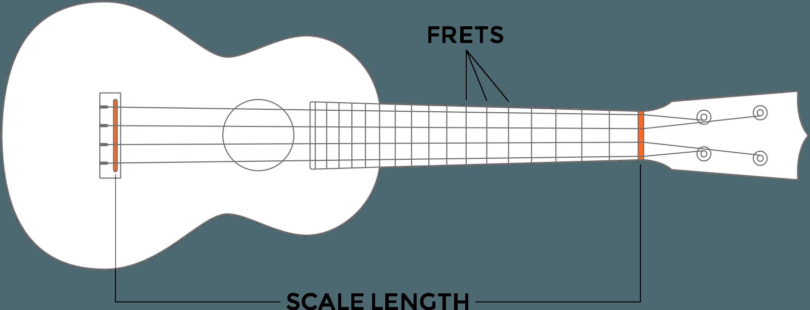 huong-dan-chon-mua-dan-ukulele-chi-tiet-nhat 5