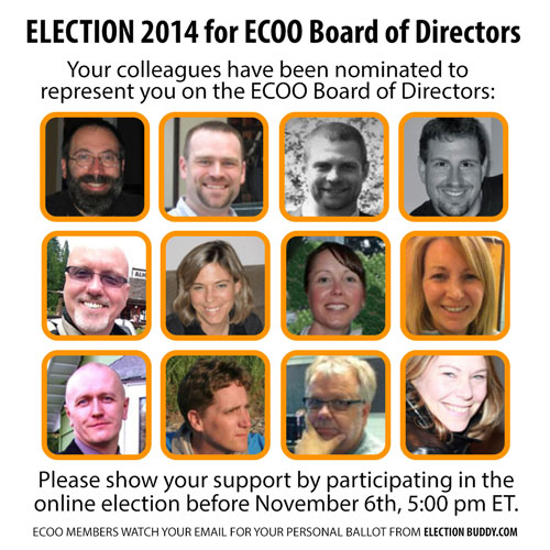Election-2014-Slate500.jpg