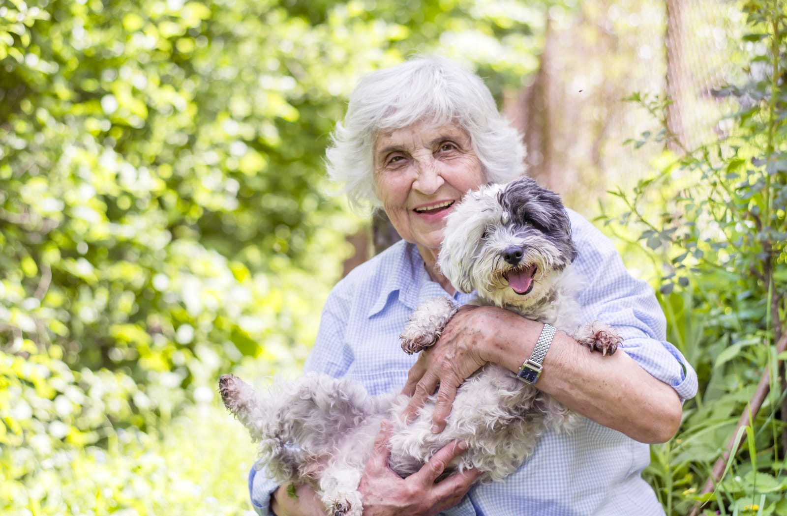 A smiling senior woman holds a small dog as part of pet therapy
