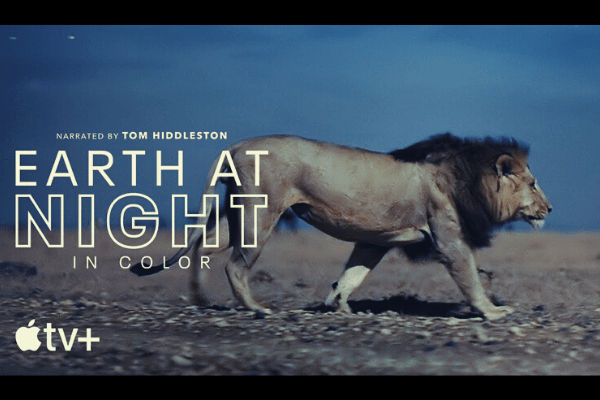 Earth at Night in Color Season 1 poster