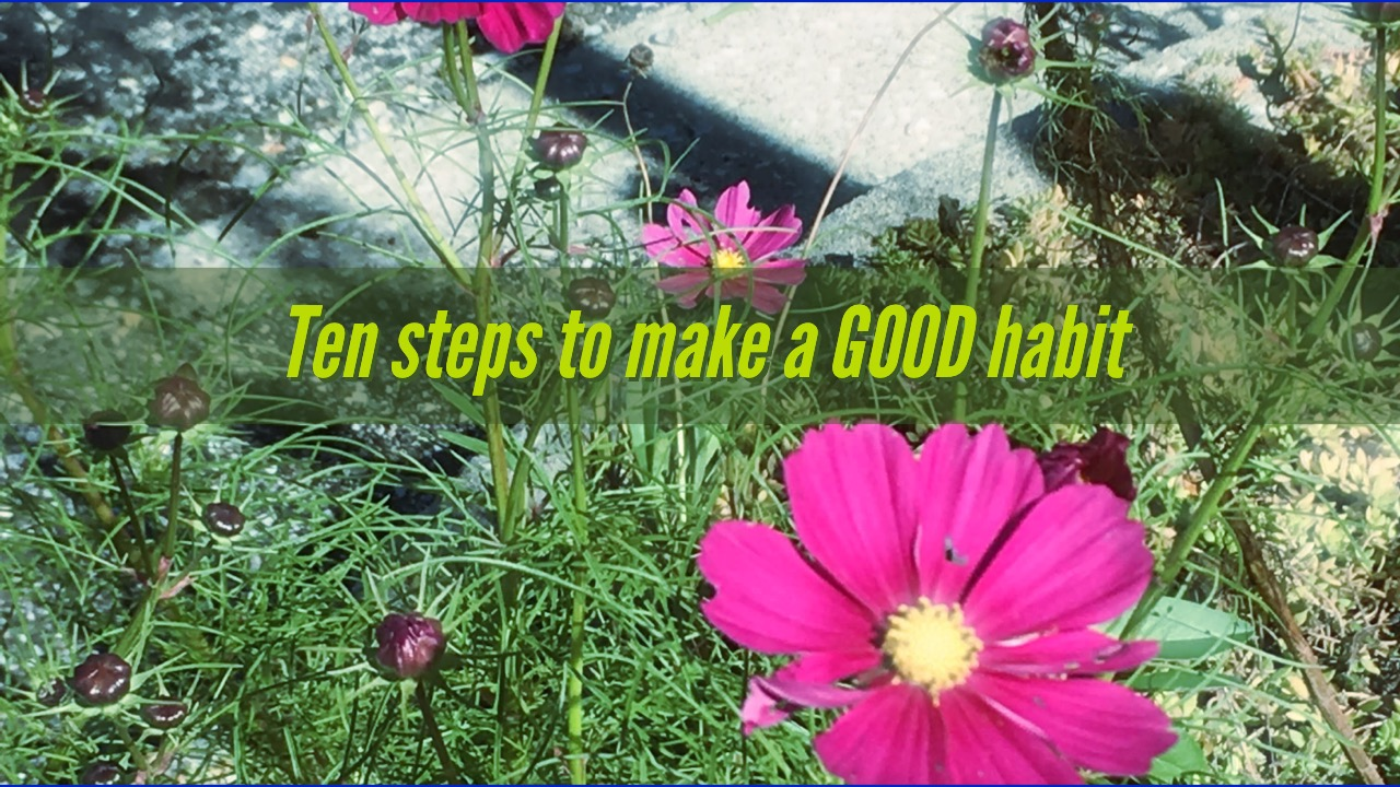 Ten Steps to form a new habit!