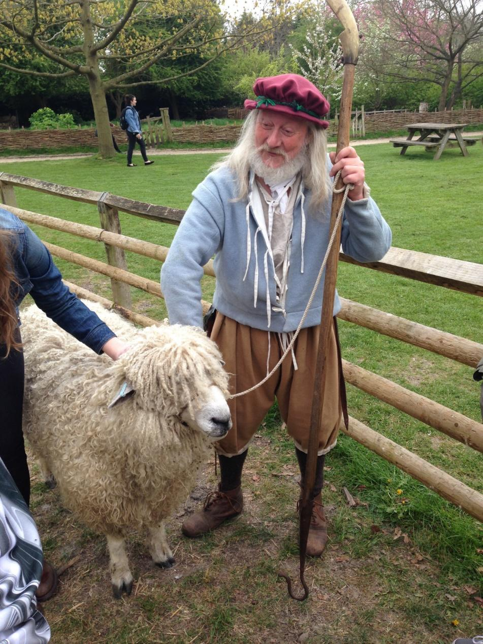 Grandpa and a sheep