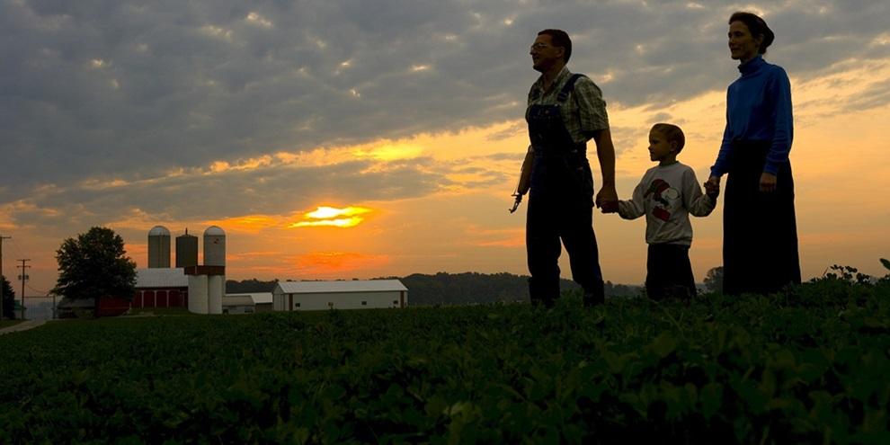 Agricultura familiar (Fonte: Pixabay/Reprodução)