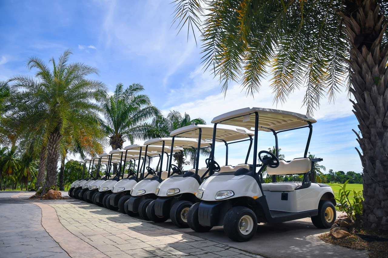 an example of some typical golf carts.