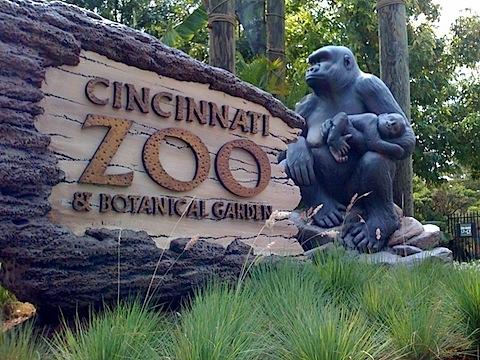 Cincy zoo