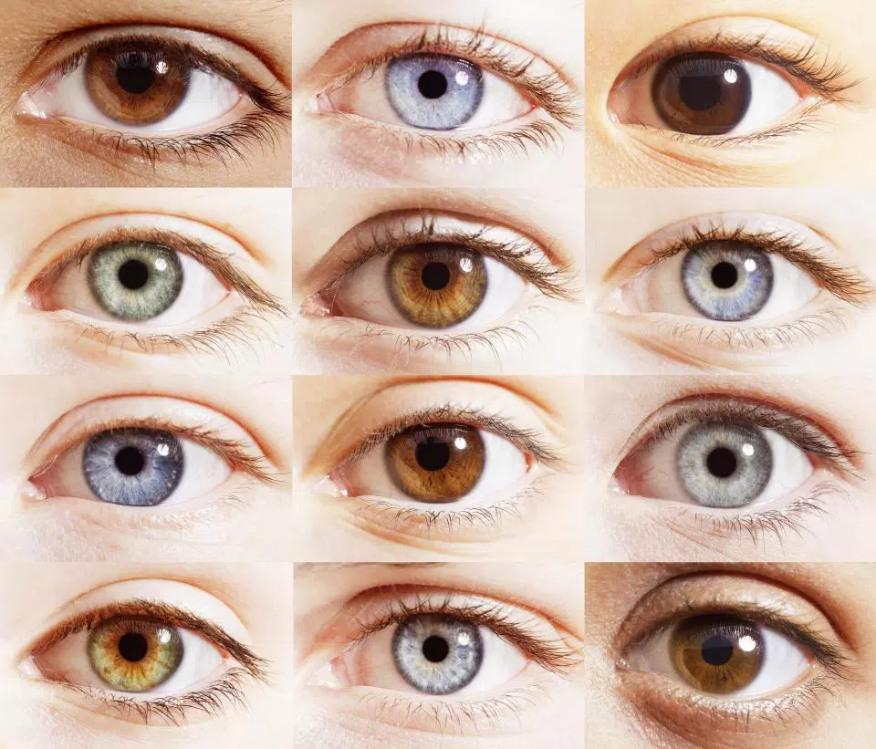 What colors are the eyes 11