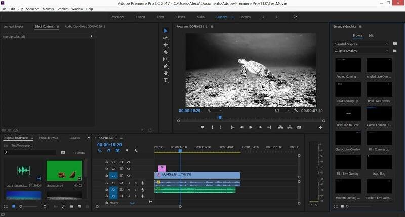 Adobe Premiere Pro - Video Converter