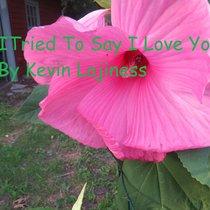 I Tried To Say I Love You