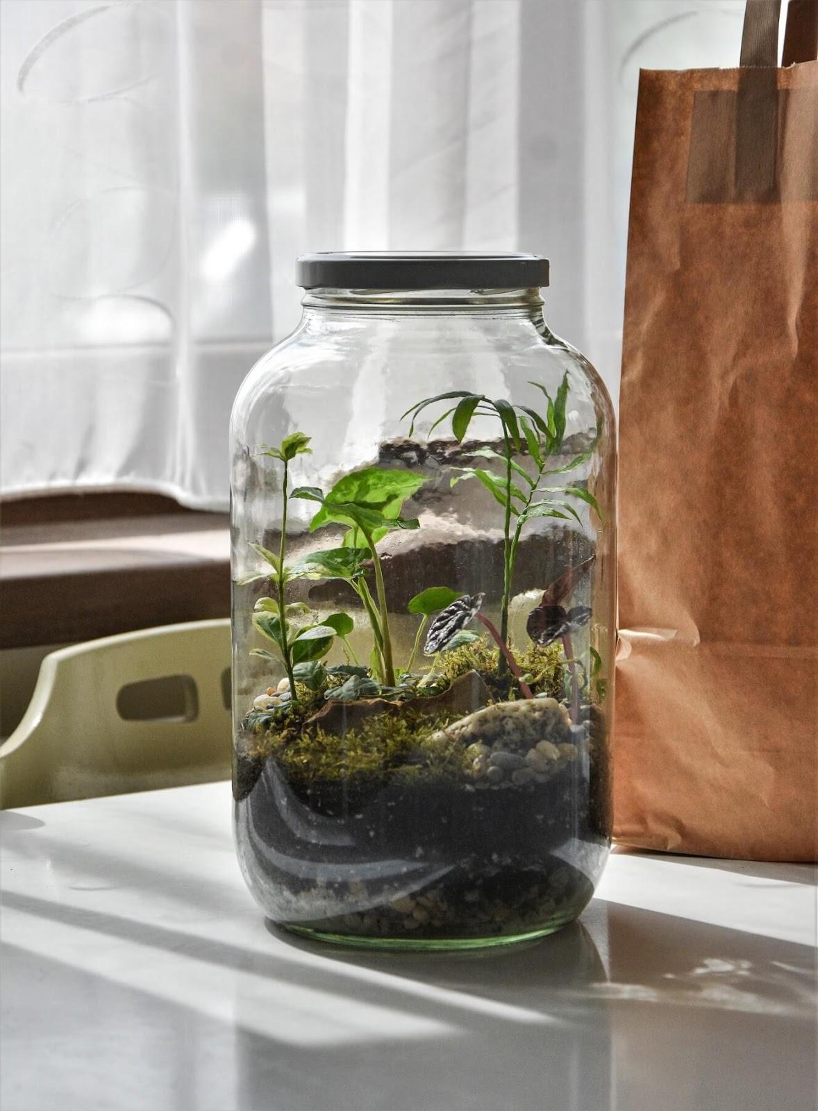 Handmade makes for Eco-friendly Holidays