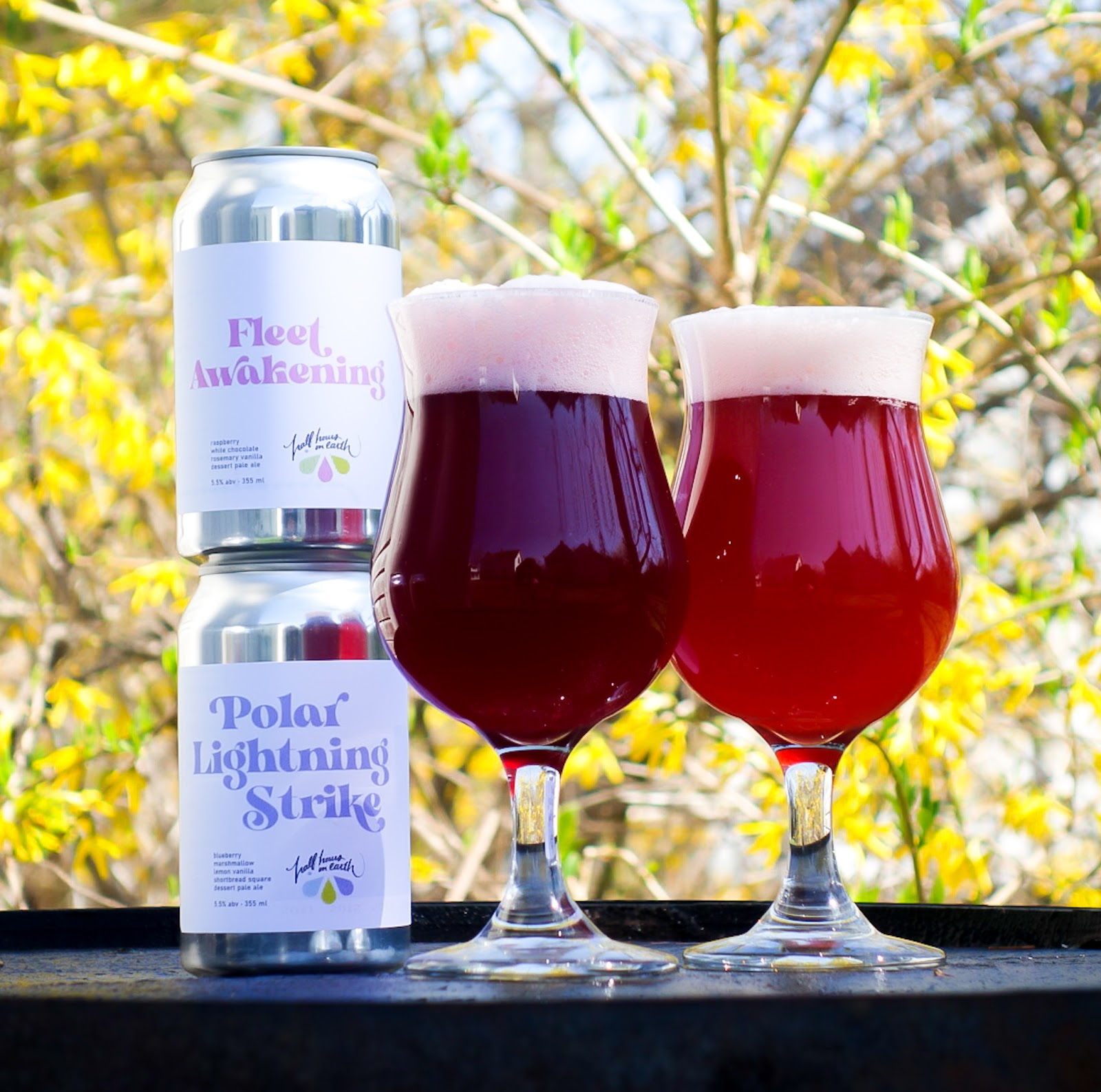 A photo of the cans for Fleet Awakening and Polar Lightning Strike beside two tulip glasses with the beers in them.  One is a dark plum colour and the other is a bright raspberry.