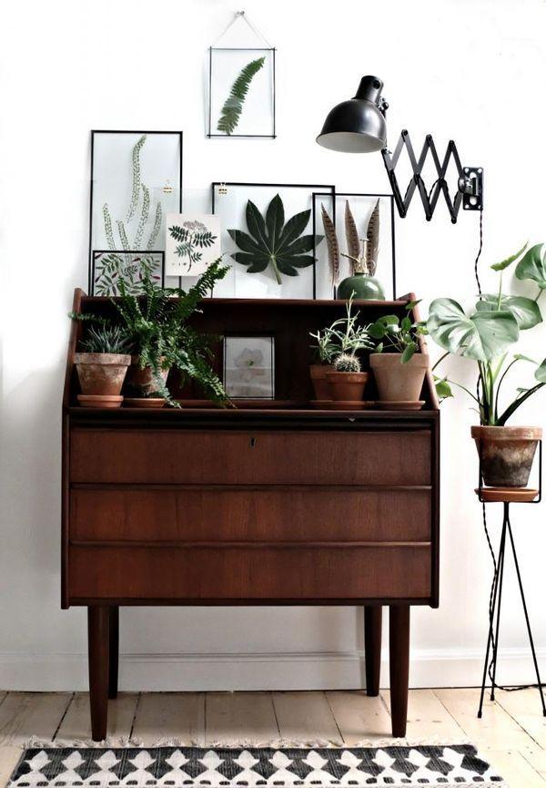 Make a Small Garden on Your Dresser
