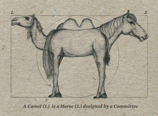 Image result for camel horse designed by committee
