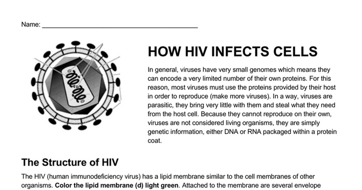 How Hiv Infects Cells Google Docs