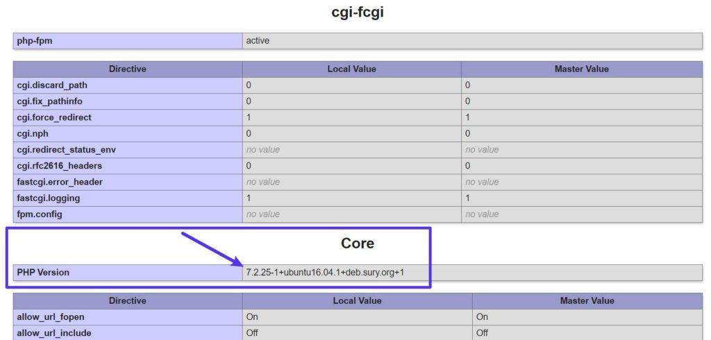 Checking PHP Version via PHPinfo File