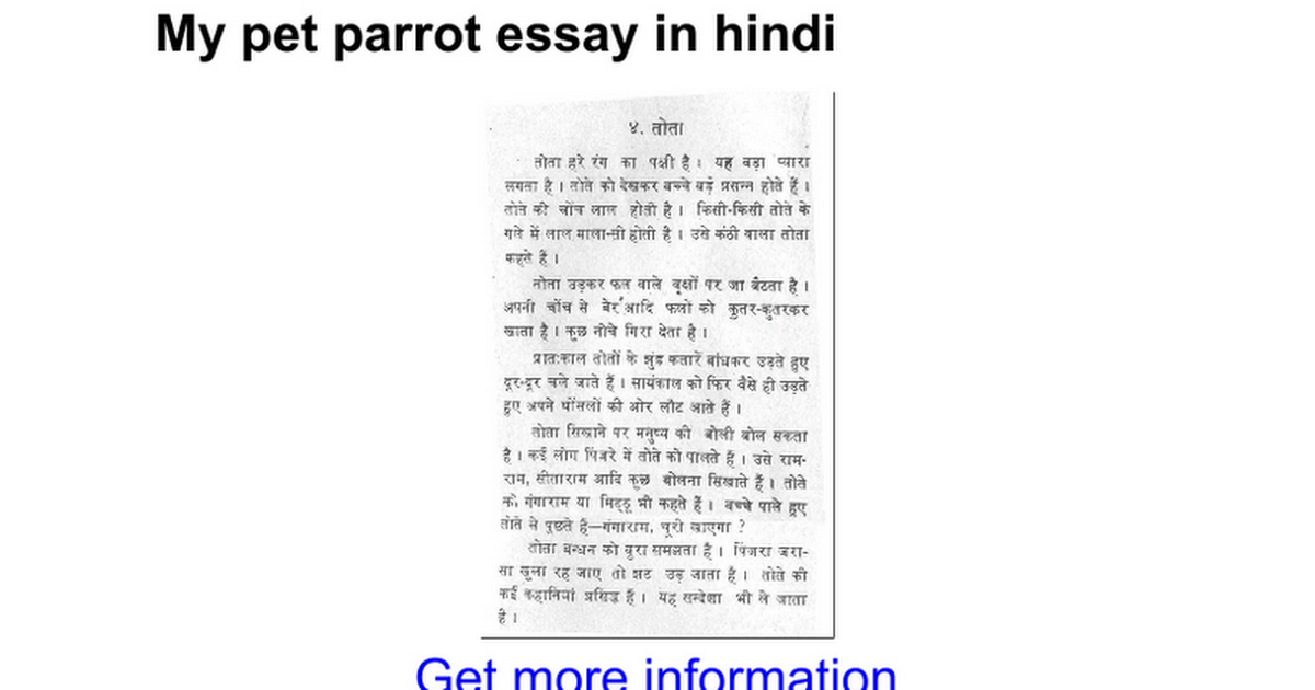 my parrot essay The parrot essay - english parrot essay for school kids  the parrot essay for school students of grade 1 to 5.