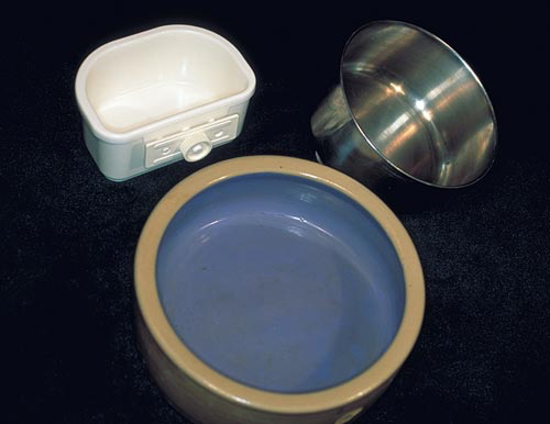 Inadequately cleaned plastic bowls are potential sources of bacterial infections