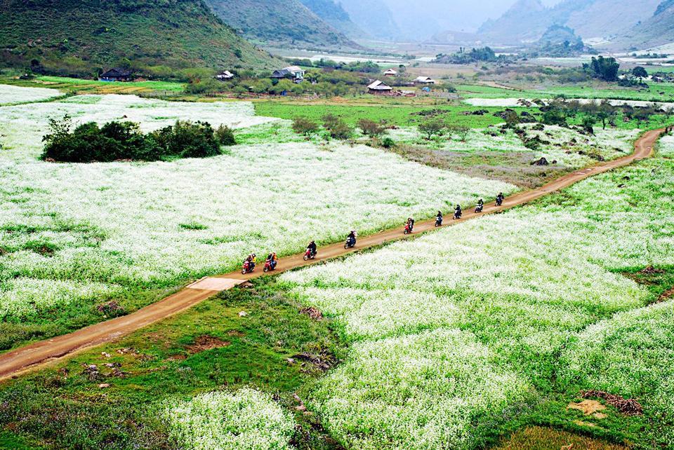 Tháng 12 nên đi du lịch ở đâu? Các điểm du lịch nên đi vào tháng 12 - Vietmountain Travel 2