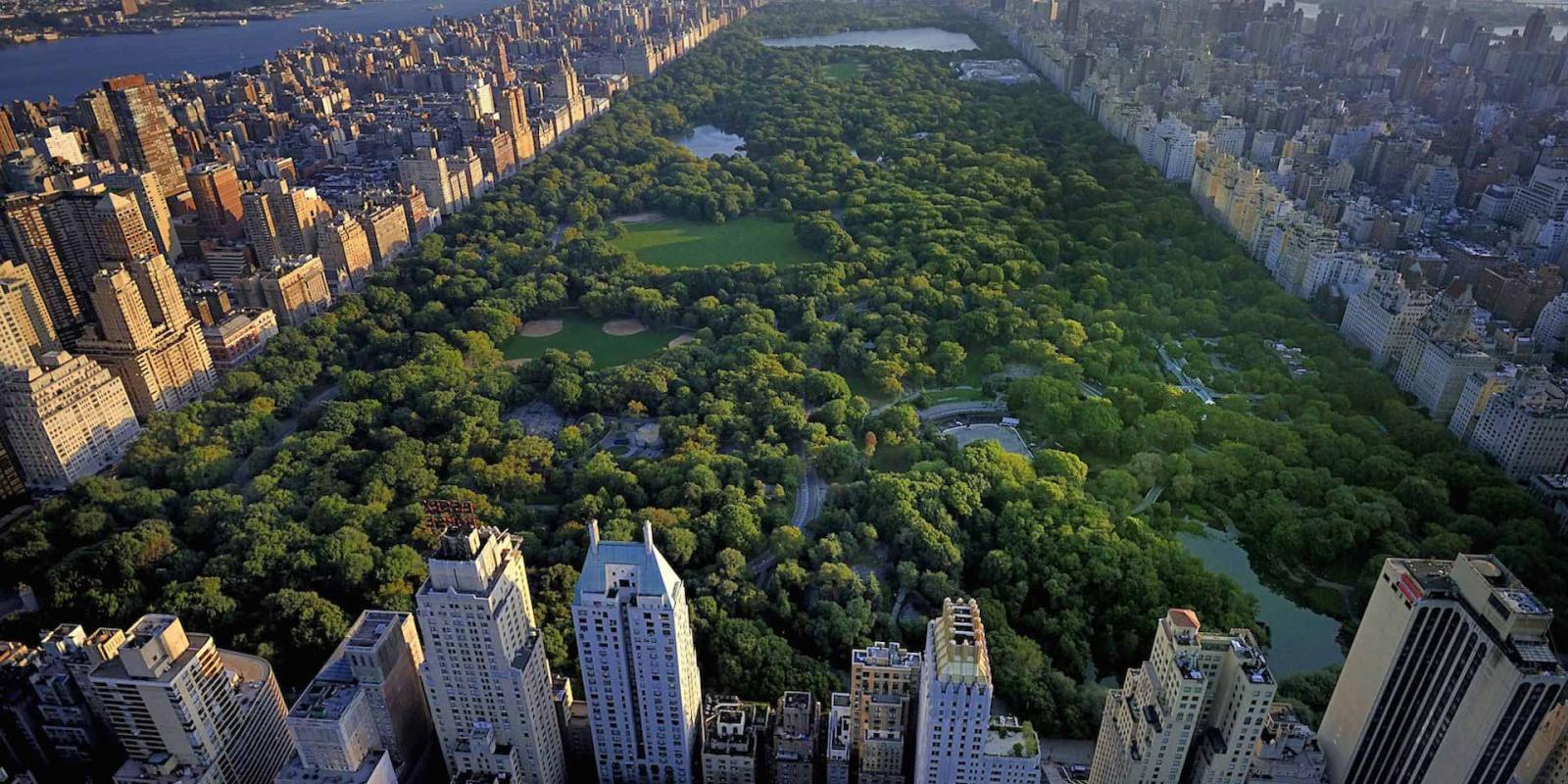Central Park Nueva York Lugares
