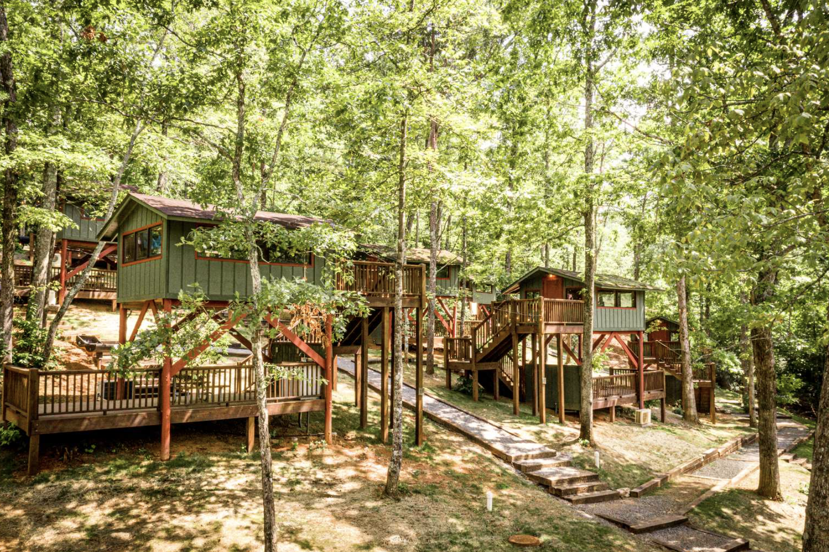 Tree houses tucked in the woods at the base of the blue ridge mountains