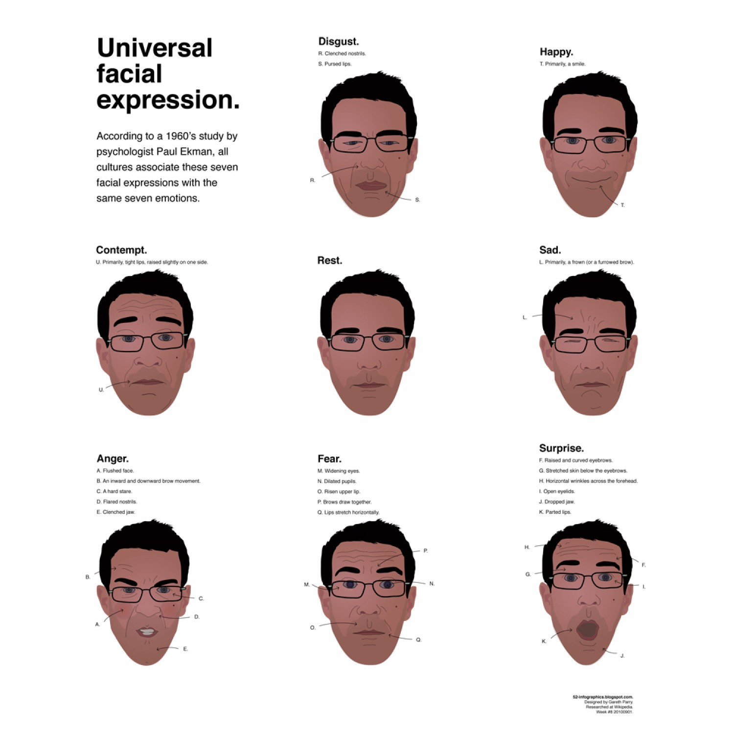 A drawing showing the 7 universal expressions: disgust, happy, rest, sad, anger, fear, surprise and contempt
