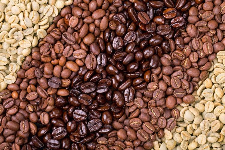 Gbtq3P2  N5uAULS6bQTz4k3RwQyI0DZRd8WX75uz4NiAhNtNliWZDVYLWEsW1MSXdujrjILl4KypfMHnd4olonPCUo9gu Dia7MI6CfczXaVTr hgAHKlddgAwHqgrQEz23Kl 4 - Как выбрать самый лучший кофе