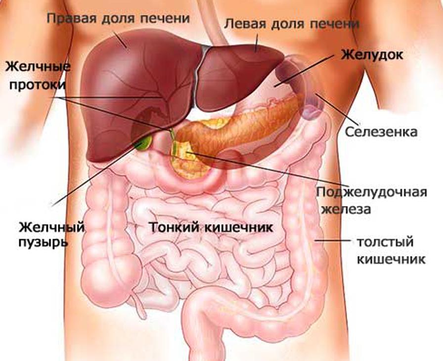 Что твкое реактивный панкреатит