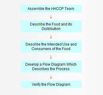 Preliminary Tasks in the Development of the HACCP Plan