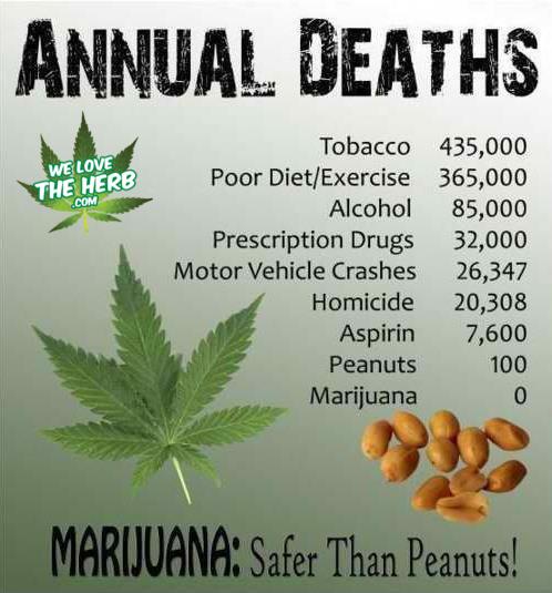Annual Deaths by Marijuana - Zero