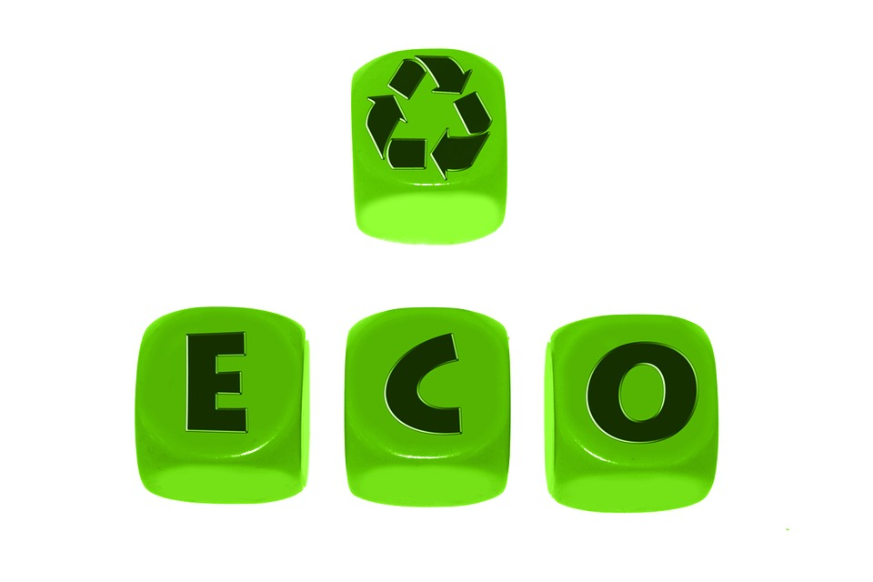 How Eco-Friendly Is Your Business?
