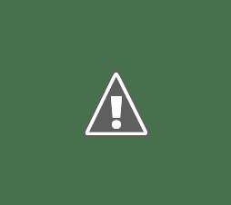 Luxury Puppy Coats, Waterproof coats for puppies