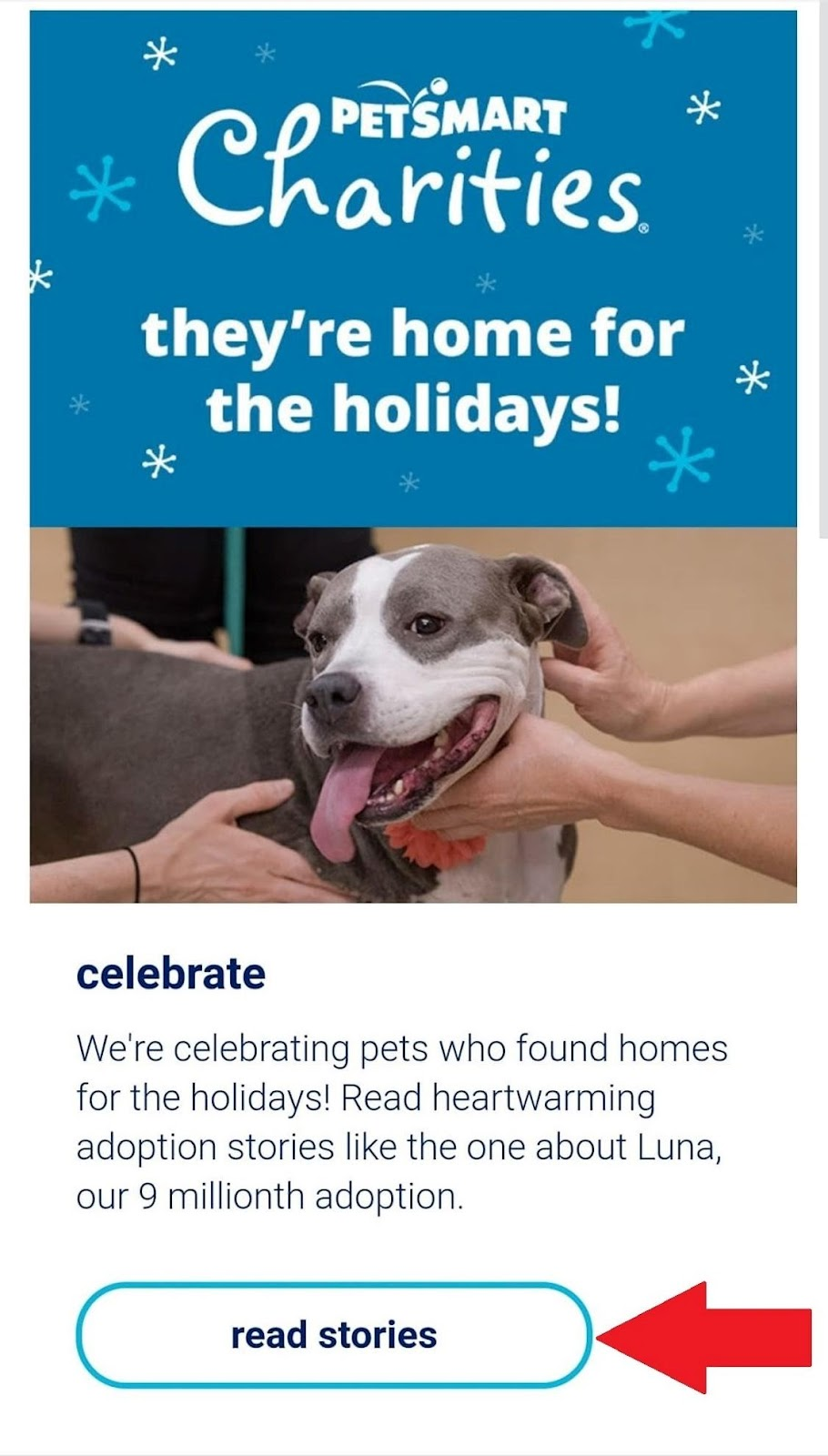 PetSmart CTA example