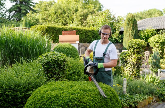 start a landscaping business with no experience