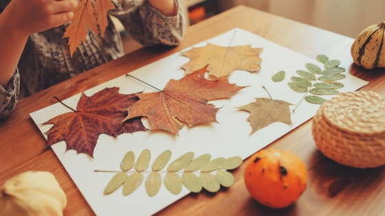 A fall leaf craft on a table