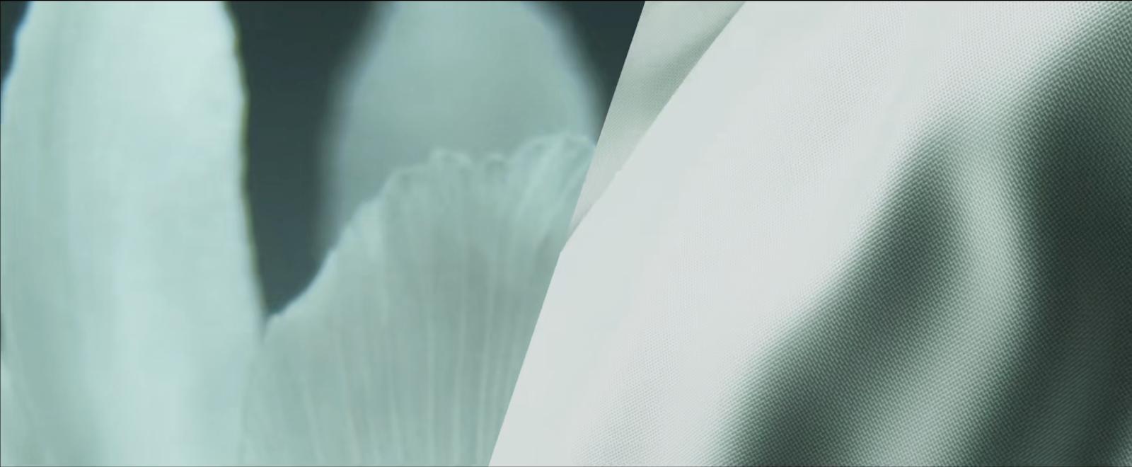 Screenshot of video after optimisation