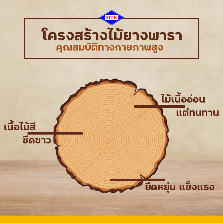 ไม้ยางพารา ปลวกกินไหม