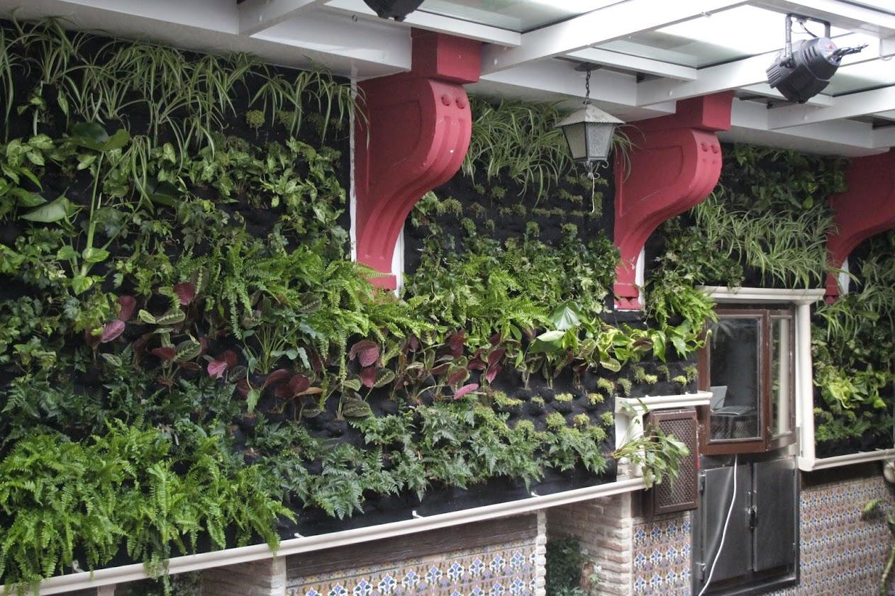 jardín vertical de toledo jardines verticales