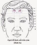 Đồ hình mắt trên chán Diện Chẩn Chữa cận thị