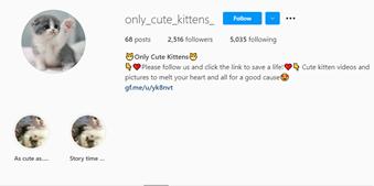keywords as instagram handle name