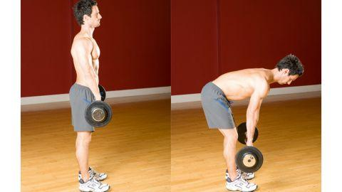 Image result for dumbbell stiff leg deadlift