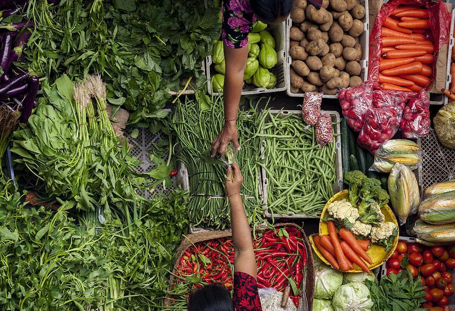 4. Cara Memilih Sayuran Segar - Belanja di Pagi Hari