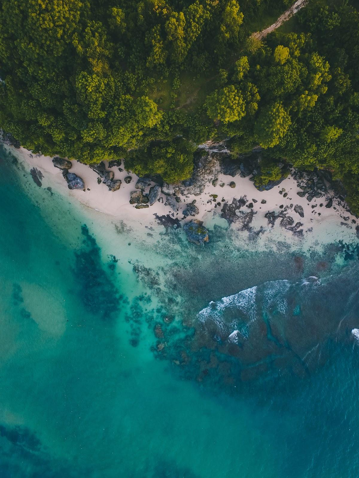 drone photography of a sea, beach and the forest