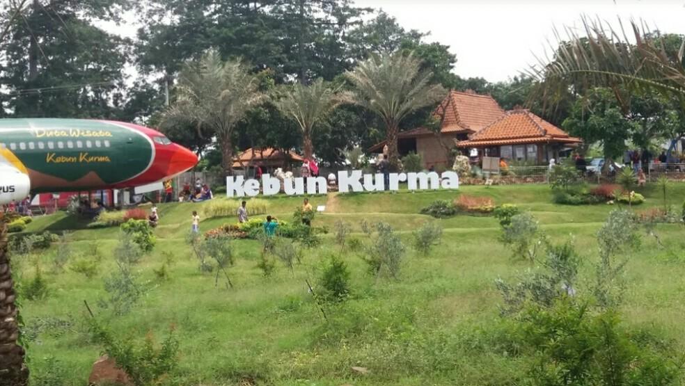 Wisata kebun Petik Kurma Pasuruan, Petik Sendiri Kurma-mu