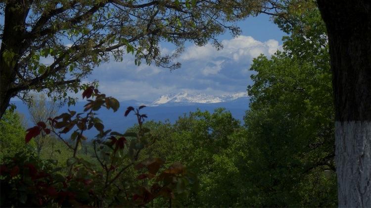 Spectacular Verdant View.jpg