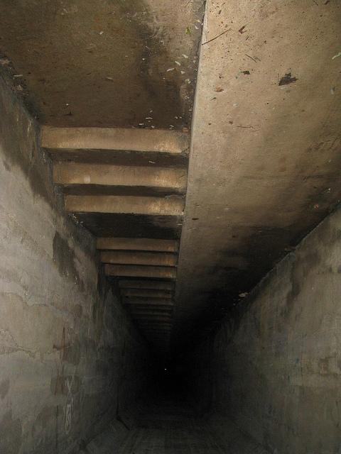 shaft down.jpg